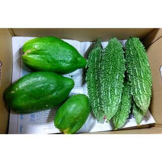 沖縄の健康美容野菜! 今帰仁村産グリーンパパイヤとゴーヤーセット(野菜)