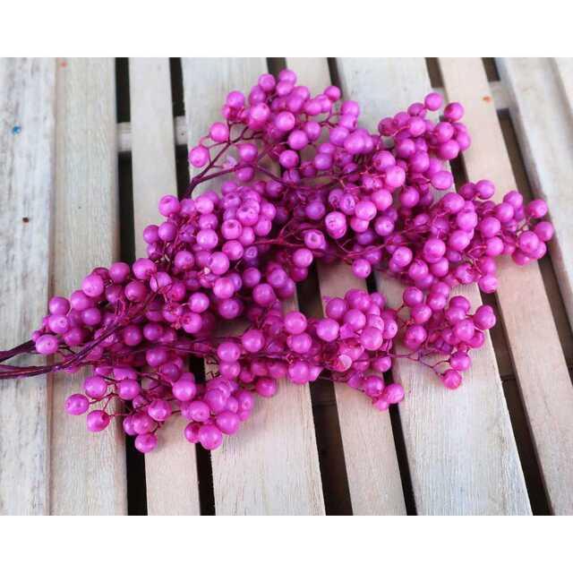 ペッパーベリースカイブルー&ホットピンク 2色セット ハンドメイドのフラワー/ガーデン(ドライフラワー)の商品写真