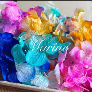 ソフトゆめ紫陽花 琉球カラー ラメ付き ハーバリウム花材(プリザーブドフラワー)