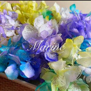 ソフトゆめ紫陽花 マーメイドグリーン ラメ付き ハーバリウム花材(プリザーブドフラワー)