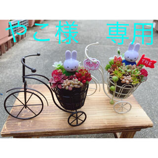 やこ様 専用★オーダー★ミッフィー★自転車★多肉植物(その他)
