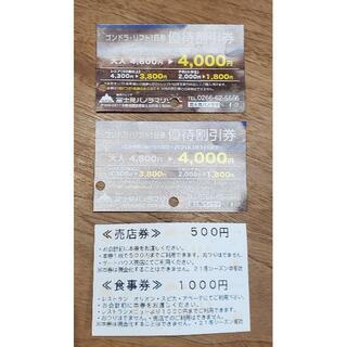 富士見パノラマスキー場 食事売店券1500円分+リフト割引券2枚(ウィンタースポーツ)