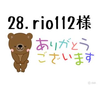 28.rio112様専用❣️韓国多肉植物❣️(その他)