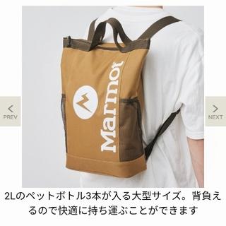 MARMOT - 値下げしました。モノマックス マーモット 付録 背負える保冷バッグ