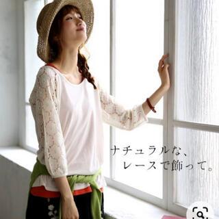 ソルベリー(Solberry)のsoulberry 七分袖レース カットソー(カットソー(長袖/七分))