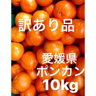 nats15様 専用 東北地方追加送料込み 訳あり品 愛媛県 ポンカン 10kg(フルーツ)