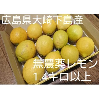 無農薬!広島県大崎下島産 特別栽培レモン 1.4キロ(フルーツ)