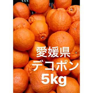 愛媛県 デコポン 5kg(フルーツ)