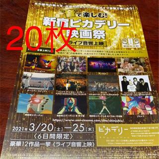 新宿ピカリデリー映画祭 フライヤー  チラシ(印刷物)