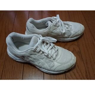 アシックス(asics)の白スニーカー  上靴  体育館シューズ(スクールシューズ/上履き)