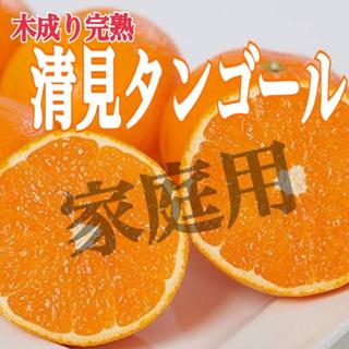家庭用【清美タンゴール】 2〜3Lサイズ 5kg(フルーツ)