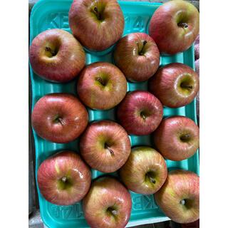 減農薬栽培 雪むろりんご 山形産 ふじ りんご 小玉14玉パック詰め3キロ 箱(フルーツ)