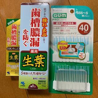 コバヤシセイヤク(小林製薬)の生葉、歯周病セット(歯磨き粉)