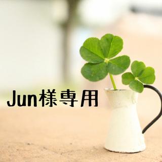 Jun様専用☆コード ホルダー クリップ①(その他)