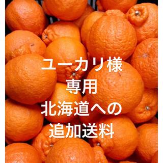 ユーカリ様 専用 北海道への追加送料(フルーツ)
