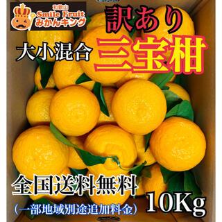 和歌山県産 三宝柑 訳あり 大小混合10Kg みかんキング(フルーツ)