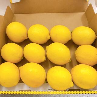 和歌山産 レモン Sサイズ(フルーツ)