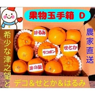 人気4種❗果物玉手箱 D❤デコ&せとか&のぞみ&はるみ❤雪だるま特選(フルーツ)