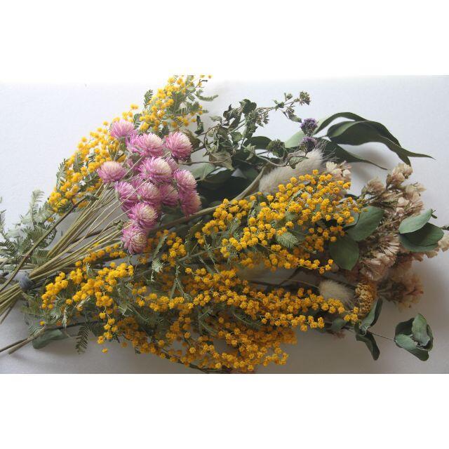 スワッグ花材(E)〜ミモザ&ユーカリ、黄色花材 ハンドメイドのフラワー/ガーデン(ドライフラワー)の商品写真