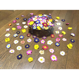 ③ 銀の紫陽花が作ったふんわり可愛い春色プリムラ山盛り50冠‼️(ドライフラワー)
