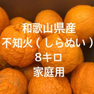 和歌山県産 しらぬい デコポン 家庭用(フルーツ)