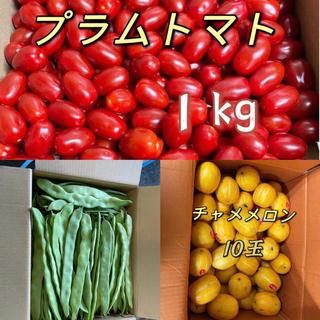 チャメメロン10玉、モロッコいんげん1kg、プラムトマト1kg(フルーツ)