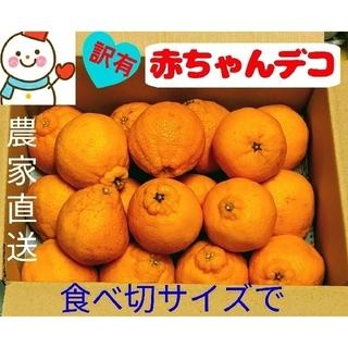 赤ちゃんデコ♥家庭用訳有♥和歌山雪だるま農家直送(フルーツ)