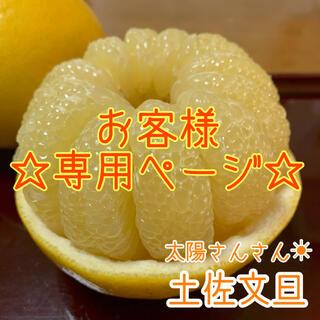 【ゆう 様   専用ページ】高知県産 土佐文旦 ぶんたん 10kg(フルーツ)