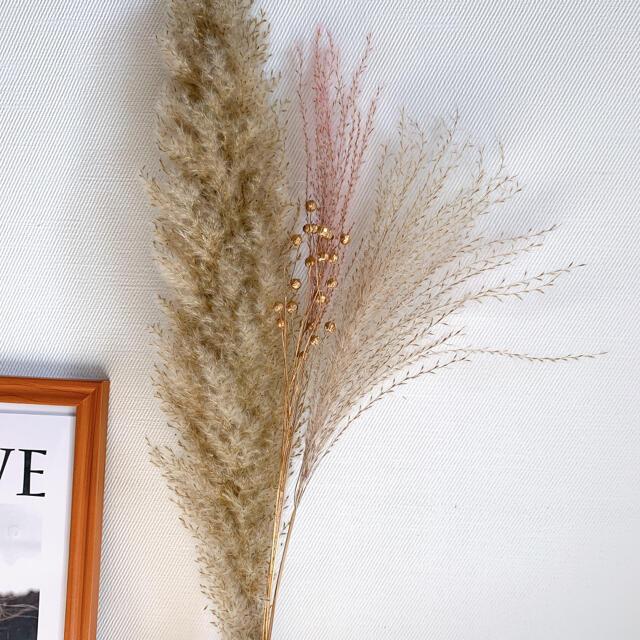 大振り パンパスグラス テールリード くすみパープル 韓国インテリア ゴールド ハンドメイドのフラワー/ガーデン(ドライフラワー)の商品写真