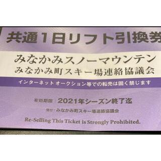 あかべぇ様専用 水上エリア共通リフト券 2枚(ウィンタースポーツ)
