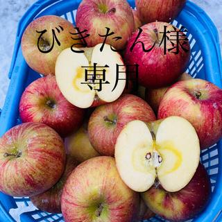 青森りんご5キロオマケ付き家庭用葉取らずサンフジ(フルーツ)