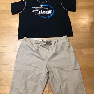 Bear USA - Bear 半袖短パンセットアップ  超超大きいsize 7LB→3XL位