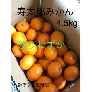 寿太郎みかん 4.5kg(フルーツ)