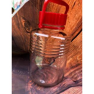 石塚硝子 果実酒瓶10号 8L  梅酒らっきょう果実酒保存瓶(容器)