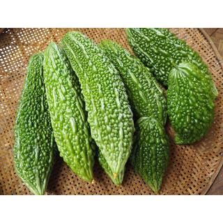 新鮮 ゴーヤ 2キロ 熊本県産 送料込み(野菜)