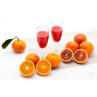 ブラッドオレンジ 秀品 (フルーツ)