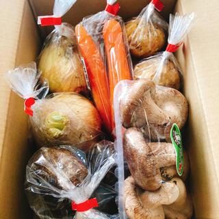 九州新鮮野菜おまかせ詰め合わせ60サイズ(野菜)