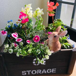 ウサギとお花畑の寄せ植え(プランター)