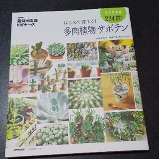 はじめて育てる!多肉植物サボテン(趣味/スポーツ/実用)