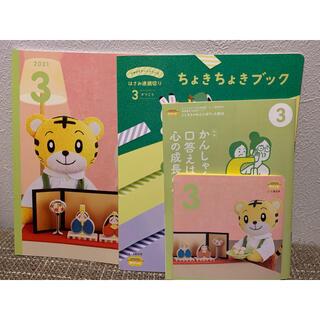 こどもちゃれんじ ぽけっと DVD 3月号(キッズ/ファミリー)