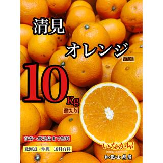 和歌山 清見オレンジ きよみ 家庭用 セール 早い者勝ち 特価価格 お買い得(フルーツ)