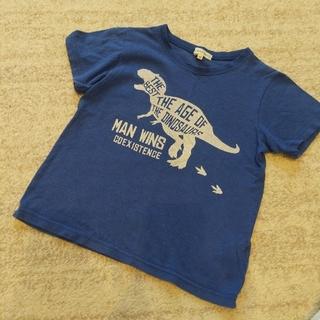 Tシャツ(恐竜柄)(Tシャツ/カットソー)