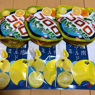 ユーハミカクトウ(UHA味覚糖)のUHA味覚糖 コロロ&湘南ゴールドグミ(菓子/デザート)