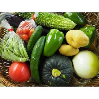 農家直売 野菜詰合せ 80サイズ 送料込み 熊本産②(野菜)