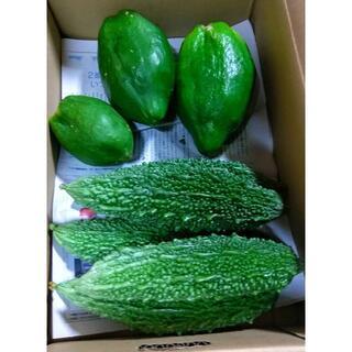沖縄の美容健康野菜! 今帰仁村産グリーンパパイヤとゴーヤーセット(野菜)