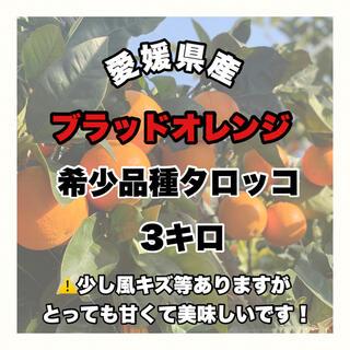 【愛媛県産】希少品種タロッコ3キロ【ブラッドオレンジ】(フルーツ)