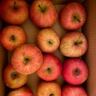 減農薬栽培 山形産 雪むろ りんご 2キロ 小玉バラ詰め(フルーツ)