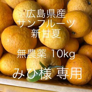 広島県産 無農薬 新甘夏 サンフルーツ 10kg  専用(フルーツ)