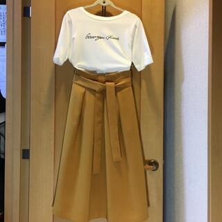 ジョルジュレッシュ(GEORGES RECH)のジョルジュ レッシュ  フレアスカート 美品 36(ロングスカート)