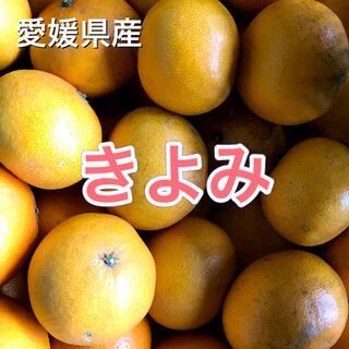 32602 愛媛県産 きよみ 10kg 訳あり 送料込み オレンジ(フルーツ)